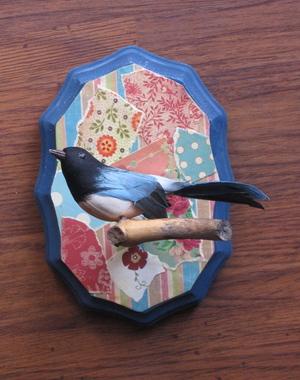 Birdblue