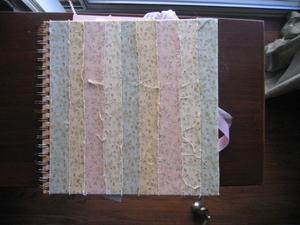 Fionasbookcover_2